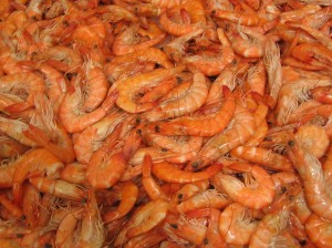 Delicious-Looking Shrimp.