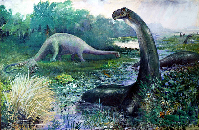 The Apatosaurus Was An Herbivore. It Is Thought To Have Been a Browser—Though No One Has Ever Seen An Apatosaurus Eat.